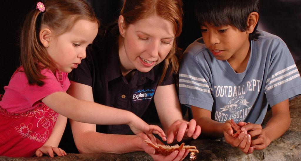 Trois enfants touchent une espèce marine