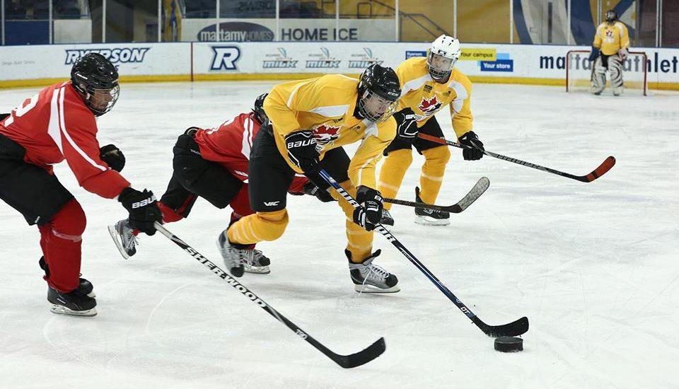 La photo montre des joueurs des hiboux en pleine action sur la glace.