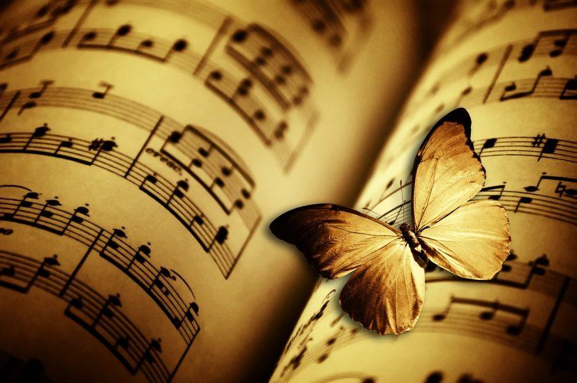 Un papillon est posé sur une feuille de musique.